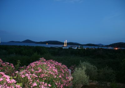villa lilliana night view